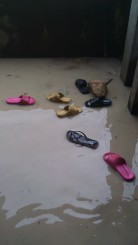 A floating shoe zoo in the classroom.